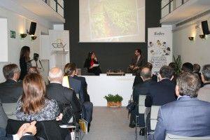ifedes-cev-multiestrategia-innovacion